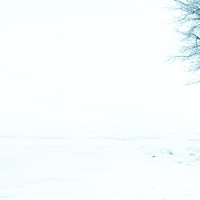 winterchillbanner